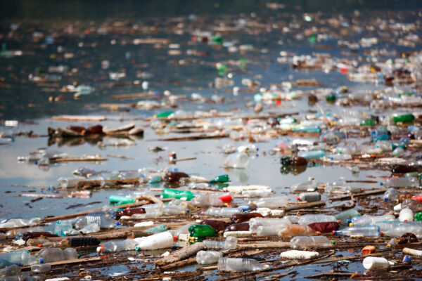 Plastic fibres found in tap water around the world